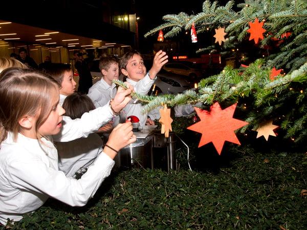 UKBB Weihnachtsbaum