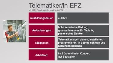 Grafik_Telematiker_EFZ